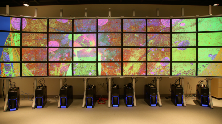 A powerwall at the SCI Institute consisting of 36, 30 inch monitors interactively visualizing a 16.5 Tb data set of electron microscope issues of the brain.